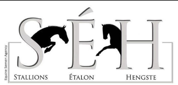Stallions, Étalons, Hengste